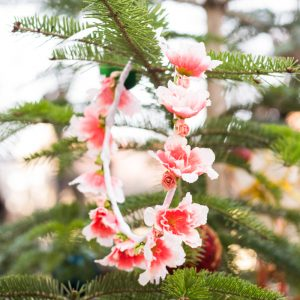 coronita flori roz si albe