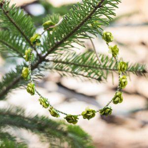 coronita flori verzi
