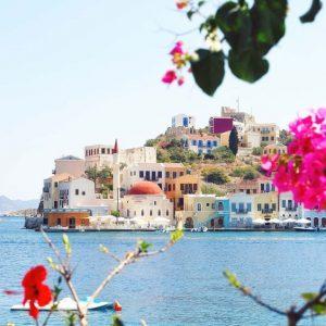 florile-Greciei